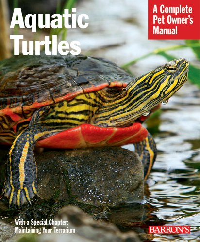 Preventing Disease in A Pet Aquatic Turtle - InfoBarrel