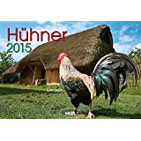 Hühner 2015