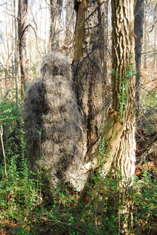 Bulls-Eye 4pc Mossy Ghillie Suit