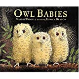 Owl Babies by Waddell, Martin (BRDBK Edition) [Boardbook(1996)]