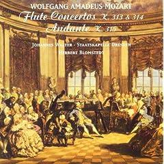 Flute Concerto No. 1 in G Major, K. 313: II. Adagio ma non troppo