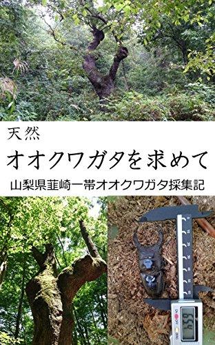 天然オオクワガタを求めて-山梨県韮崎一帯オオクワガタ採集記-