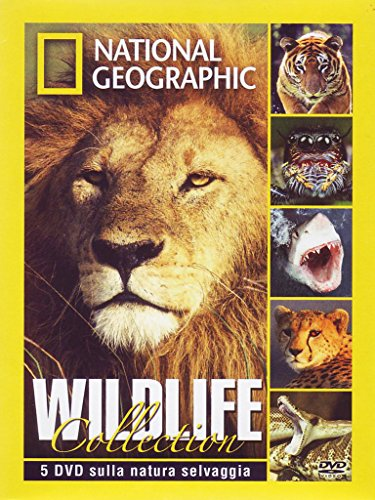 wildlife-collection