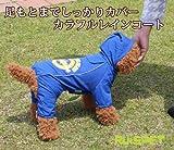 カラフルレインコート ブルー 中型犬用 (2XLサイズ)【RUISPET ルイスペット】 ワンコ服 犬服 ドッグウェア