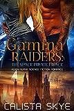 Gamma Raiders: The Space Pirate Prince: Alien Alpha Science Fiction Romance