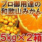 【送料無料2980円】プロ御用達☆訳あり和歌山みかん10kg