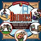 Bridges ! Amazing Structures