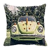 MeSleep Cars 3D Cushion Cover (16x16)