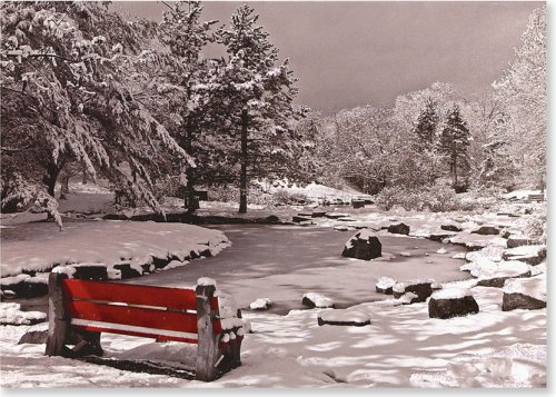 Snowy Bench (Christmas Cards, Holiday Cards, Greeting Cards) (Large Holiday Card Series)