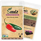 CERTIFIED ORGANIC SEEDS (Apr. 50) - Early Jalapeno Pepper Seeds - Heirloom Seeds - Non GMO, Non Hybrid - USA