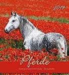 Pferde 2017 - Postkartenkalender - (1...