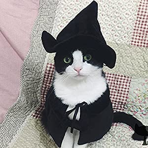 Cute Hooded Cloak Witch / Wizard Costume for Small Dogs & Cat Kitten, Cat Costume