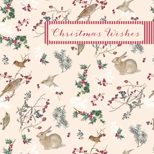 luxury-christmas-cards-wallet-of-10-in-2-designs-edith-holden-5-x-5-wxp0074