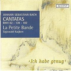 Ich habe genug, BWV 82: Recitative: Ich habe genug! Mein Trost ist nur allein
