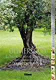 Oliviers & Co, l'huile d'olive grand cru : Emotions, sensations, créations