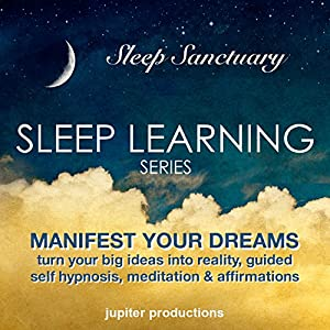 Manifest Your Dreams, Turn Your Big Ideas into Reality Speech