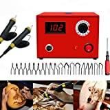 TOPCHANCES Wood Pyrography Kit, 110V 50W Upgrade Multifunction Pyrography Machine Variable Temperature Control Digital Display Wooden Crafts Set with 2 Pcs Pyrography Pens and 2Pcs Pen Stands (Color: Pyrography Kit)