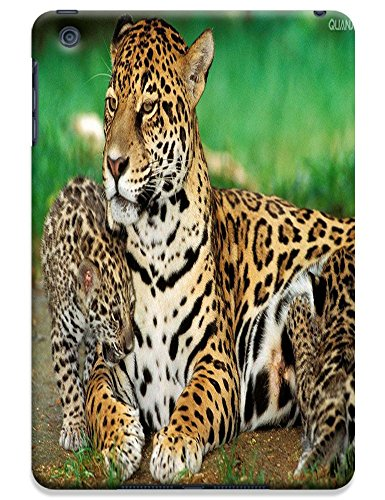 Fantastic Faye Cell Phone Cases For Ipad Mini No.18 The Special Design With Cute Foolishly Gray Pure Tiger On The Water Grass
