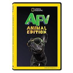 America's Funniest Videos: Animal Edition