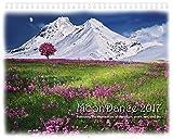 MoonDance – Lunar Calendar – Moon Wall Calendar 2017