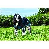 Weatherbeeta Parka 1200D Deluxe Dog Coat Black/teal