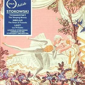 The Sleeping Beauty (Highlights): Act II: No.17 Panorama