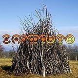 Zammuto (Vinyl)