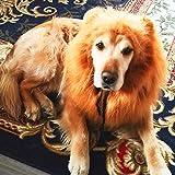 Amazon.co.jpファンシー(fancy) ライオン たてがみ 犬用コスチューム 犬 用 ライオン コスプレ グッズ ペット 着ぐるみ かつら