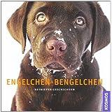 """Engelchen & Bengelchen: Retriever Geschichtenvon """"Carsten Schr�der"""""""