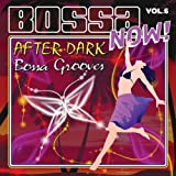 echange, troc Various Artists - Bossa Now 6: After Dark: Bossa Grooves