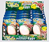 Wild World Dinosaur Magic Grow Egg