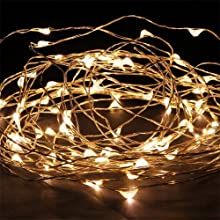 Coco LED 33FT Copper Wire LED Starry Lights 100LED String Lights with Power Adapter (Warm White)