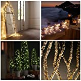 Solar Fairy Lights, Amir® Easter lights, Starry String Lights, 7 Meters, Waterproof, [100 LEDs] , 1.2 V, Warm White, Portable, with Light Sensor, Outdoor Blossom String Lights, Ideal for Christmas, Wedding, Party (Warm White)