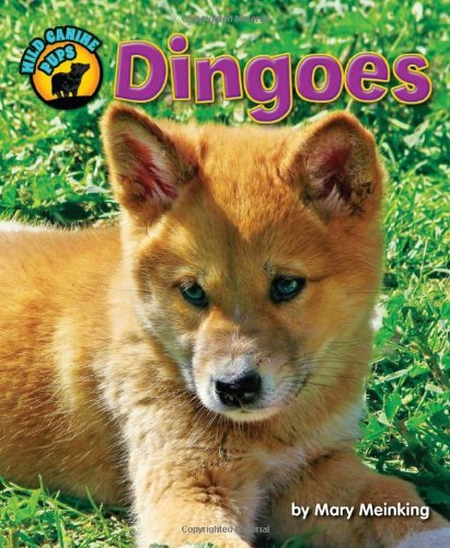 Dingoes (Wild Canine Pups) PDF