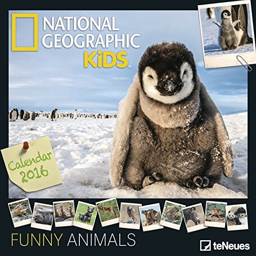 funny-animals-magic-moments-2016-grid-calendar-national-geographic-kids-photography-calendar-30-x-30