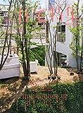 新建築住宅特集 2015年 05 月号 [雑誌]