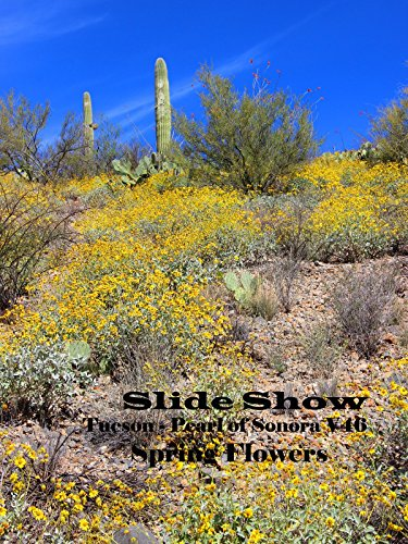 Slide Show - Tucson, Pearl of Sonora V46 - Spring Flowers 2015