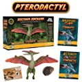 Pterodactyl Action Figure - Includes Real Dinosaur Bone Fossil!