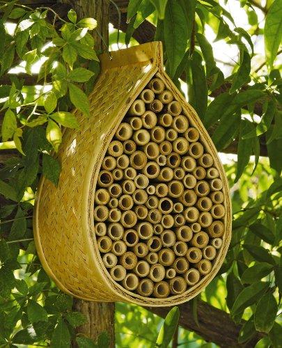 Mason-Bee-House