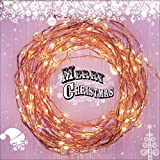 Fairy Star Lights™ Extra Long 39 ft Warm White LED Copper String Lights – Indoor / Outdoor All Weather – FREE Battery Power Adapter Included with DC 6V Wall Adapter! thumbnail