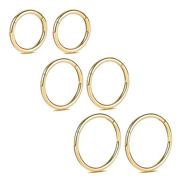 Peaklink 18 Gauge Surgical Steel Segment Septum Ring Hinge Clicker