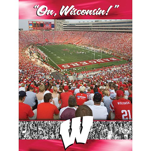 Cheap Fun Racing Reflections Wisconsin Badgers 18X22 550 Piece Jigsaw Puzzle (B003J1RU9G)