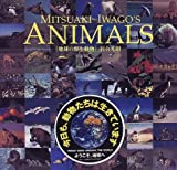 MITSUAKI IWAGO'S ANIMALS―地球の野生動物