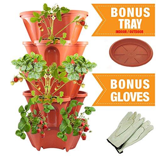 >5-Tier Stackable Strawberry, Herb, Flower, & Vegetable Planter - Vertical Gardening Indoor