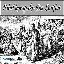 Bibel kompakt: Die Sintflut Hörbuch von Alessandro Dallmann Gesprochen von: Michael Freio Haas