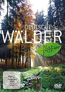 Deutsche Wälder - Natur pur