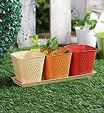 Set of Three Herb Pots Red