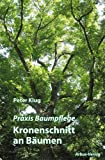 Praxis Baumpflege - Kronenschnitt an B�umen