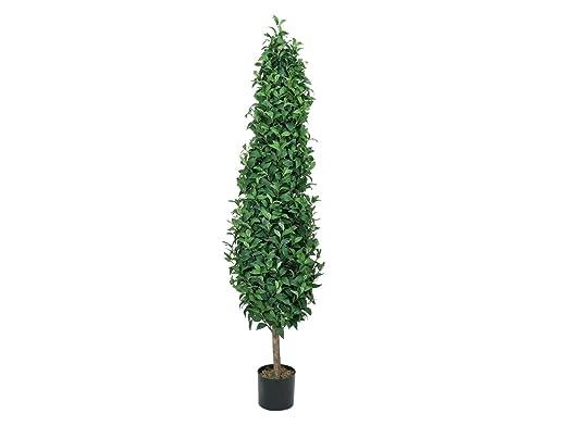 Set 2 xÁrbol de laurel LEONARDO en maceta, verde, 180 cm - 2 unidades de Planta artificial / Árbol decorativo - artplants