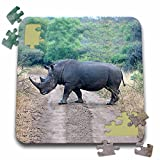Angelique Cajam Safari Animals - South African Rhino side view - 10x10 Inch Puzzle (pzl_20116_2)